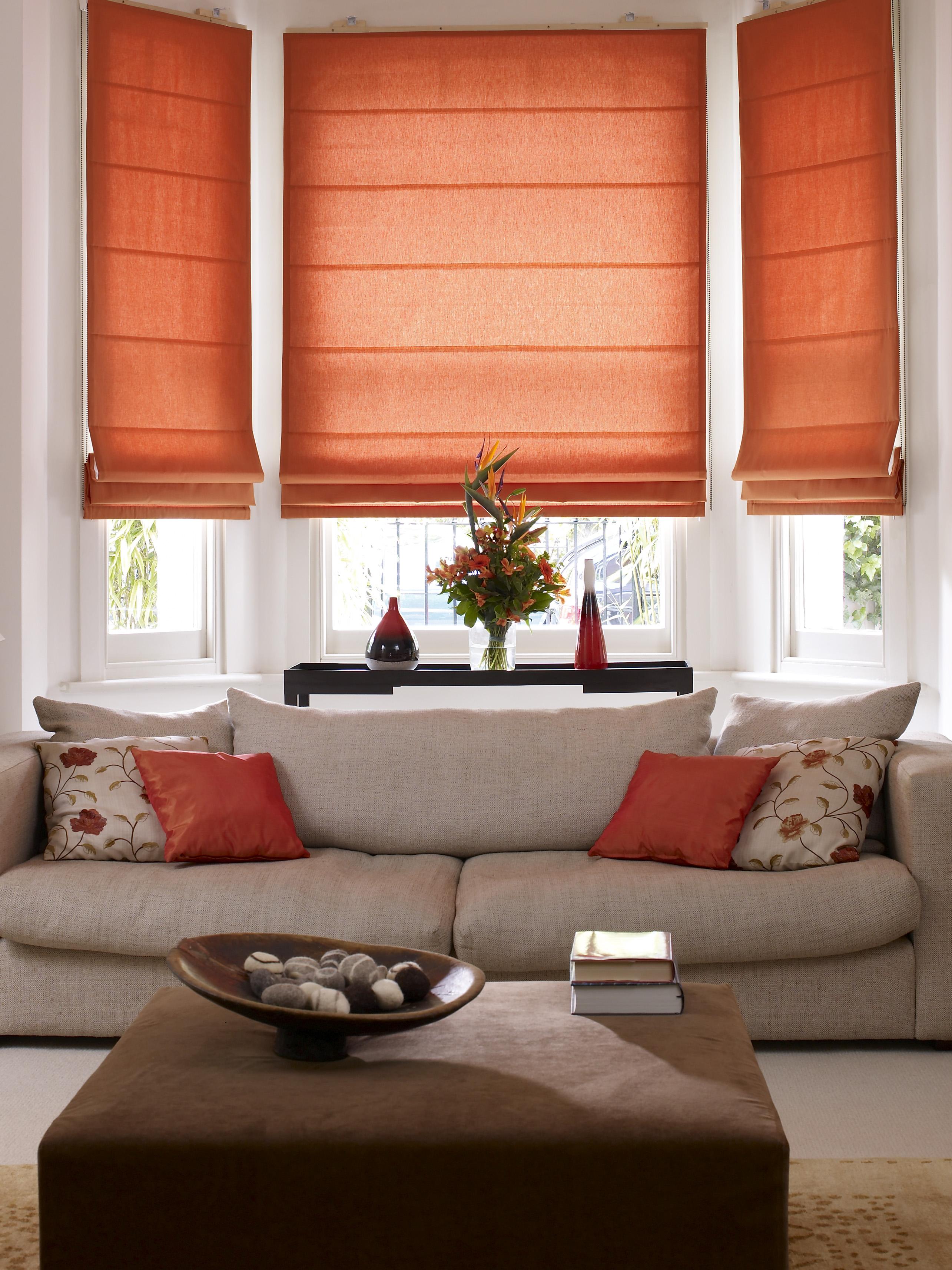 roman blinds living room - euskal